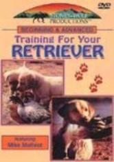 Beg & Advanced Training: Your Retriever