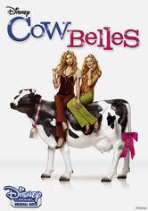 Rent Cow Belles on DVD