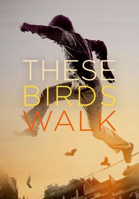 Rent These Birds Walk on DVD
